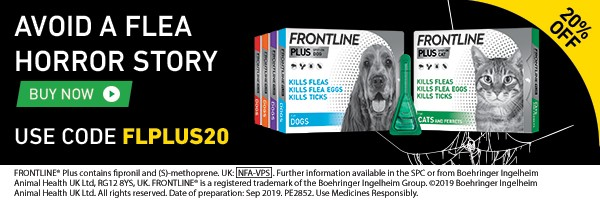Frontline Plus offer
