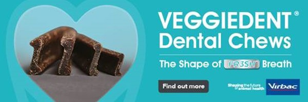 Veggiedent Dental Chews Offer