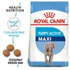 Royal Canin Maxi Puppy Active Dry Food for Puppies 15kg