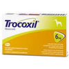 Trocoxil Chewable Tablet for Dogs 6mg (Single Tablet)