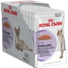 Royal Canin Feline Sterilised Pouches in Gravy (12 x 85g)