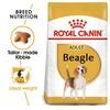 Royal Canin Beagle Dry Adult Dog Food 12kg