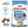 Royal Canin Medium Starter Mother & Babydog Food