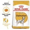 Royal Canin Dalmatian Dry Adult Dog Food 12kg