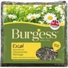 Burgess Excel Chamomile Feeding Hay 500g