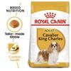 Royal Canin Cavalier King Charles Dry Adult Dog Food