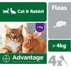 Advantage 80 Flea Treatment for Large Cats and Rabbits 4 Pipettes