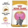 Royal Canin British Shorthair Kitten Food 2kg