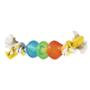 JW Treat Pod Dog Toy