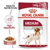 Royal Canin Medium Adult Wet Dog Food in Gravy