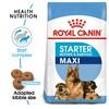 Royal Canin Maxi Starter Mother & Babydog Food 15kg