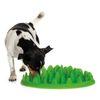 Company Of Animals Green Interactive Feeder for Dogs