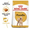 Royal Canin Poodle Dry Adult Dog Food