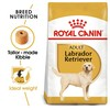 Royal Canin Labrador Retriever Dry Adult Dog Food