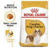 Royal Canin Cavalier King Charles Dry Adult Dog Food