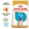 Royal Canin Pug Dry Puppy Food 1.5kg