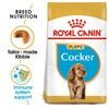 Royal Canin Cocker Spaniel Dry Puppy Food 3kg