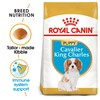 Royal Canin Cavalier King Charles Dry Puppy Food 1.5kg