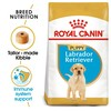 Royal Canin Labrador Retriever Puppy Dry Food 12Kg