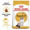 Royal Canin Ragdoll Adult Cat Food 2Kg