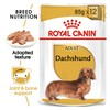 Royal Canin Dachshund Wet Adult Dog Food