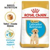 Royal Canin Labrador Retriever Dry Puppy Food