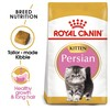 Royal Canin Persian Kitten Food 2kg