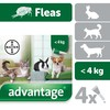 Advantage 40 Flea Treatment for Small Cats / Small Dogs / Rabbits 4 Pipettes