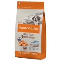 Nature's Variety Meat Boost Dry Dog Food (Norwegian Salmon) big image