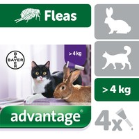 Advantage 80 Flea Treatment for Large Cats and Rabbits 4 Pipettes big image