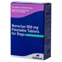 Noroclav 500mg Palatable Tablets for Dogs big image