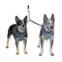 Double Dog Coupler big image