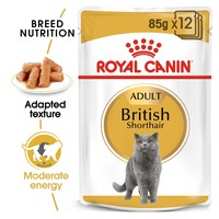 Royal Canin British Shorthair Pouches in Gravy Adult Cat Food big image