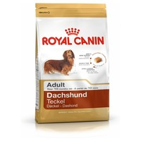 Royal Canin Dachshund Adult big image