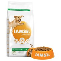 Iams for Vitality Large Breed Adult Dog Food (Lamb) 12kg big image