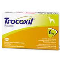 Trocoxil Chewable Tablet for Dogs 6mg (Single Tablet) big image