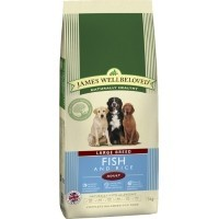James Wellbeloved Adult Dog Large Breed Fish and Rice big image