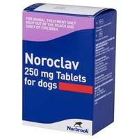 Noroclav 250mg Tablets for Dogs big image