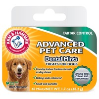 Arm & Hammer Dental Mints for Dogs big image