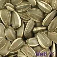 VetUK Black Sunflower Seeds 12.75kg big image