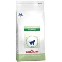 Royal Canin Pediatric Weaning Cat Food big image
