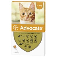Advocate for Small Cats big image