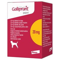 Galliprant 20mg Flavoured Tablets for Dogs big image
