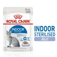 Royal Canin Indoor Sterilised Adult Wet Cat Food in Jelly big image