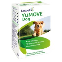Lintbells YuMOVE Dog big image