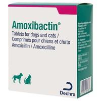 Amoxibactin 500mg Tablets for Dogs big image