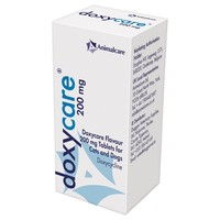 Doxycare 200mg Flavoured Tablets for Cats and Dogs big image