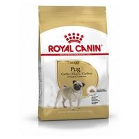 Royal Canin Pug Adult big image