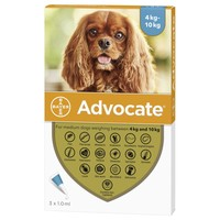 Advocate for Medium Dogs big image