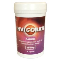 Invigorate Canine Capsules for Dogs (Pot of 80) big image
